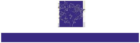 Cyberlibris Logo