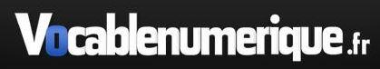 vocable numerique logo