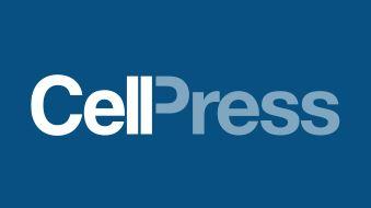 cellpress logo grand